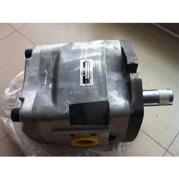 PV29-2R1D-J02 Hidrolik pompa #3 image