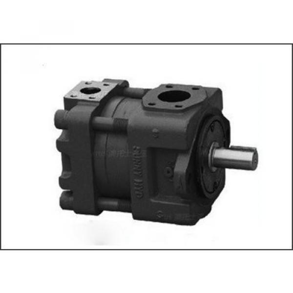 PV29-2R1D-J02 Hidrolik pompa #2 image
